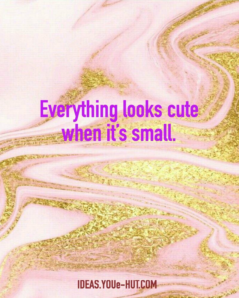 Cute Quotes • YOUeHUT IDEAS